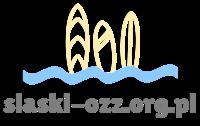 Wszystko o sportach wodnych   slaski-ozz.org.pl